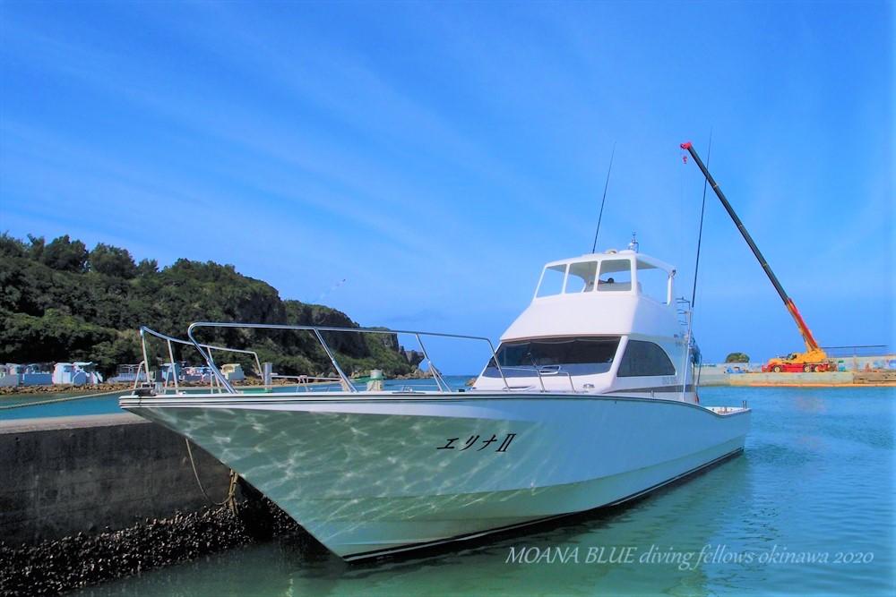 沖縄・恩納村ホエールウォッチング協会
