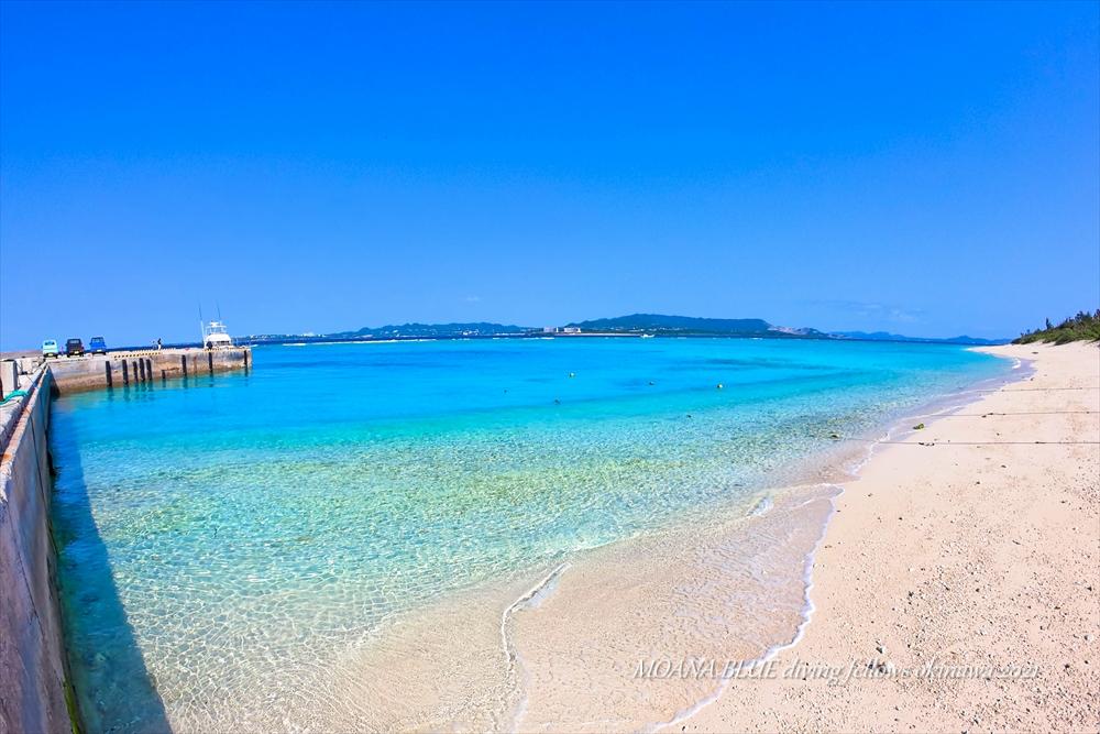恩納村ホエールウォッチング|沖縄